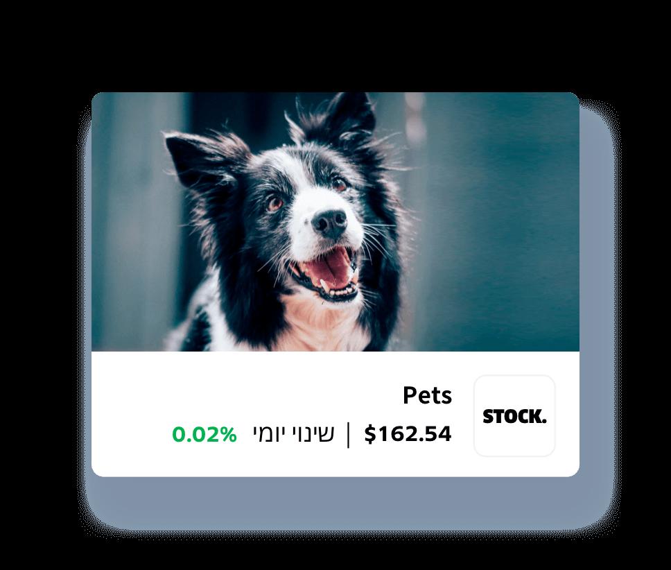 stock.pets. 162.45$. שינוי יומי 0.02%